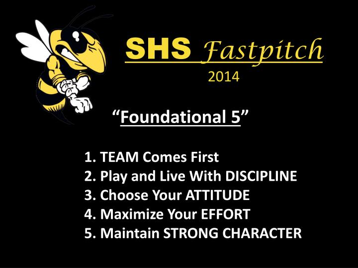 Shs fastpitch 20141