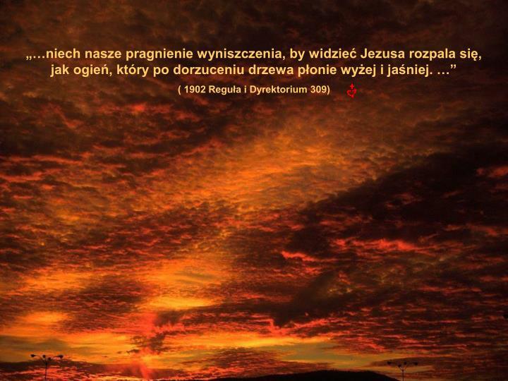"""""""…niech nasze pragnienie wyniszczenia, by widzieć Jezusa rozpala się,       jak ogień, który po dorzuceniu drzewa płonie wyżej i jaśniej. …"""""""