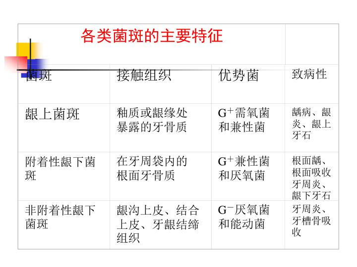 各类菌斑的主要特征