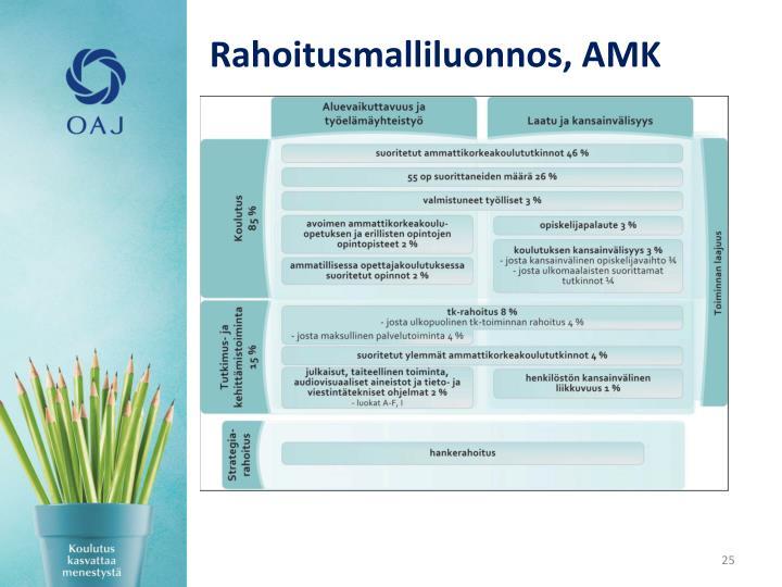 Rahoitusmalliluonnos, AMK