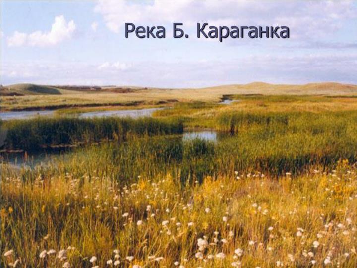 Река Б. Караганка