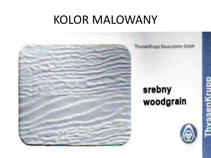 KOLOR MALOWANY