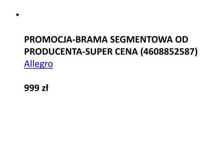 PROMOCJA-BRAMA SEGMENTOWA OD PRODUCENTA-SUPER CENA (4608852587)