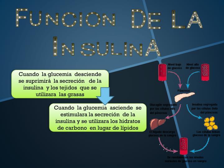 Cuando  la glucemia  desciende  se suprimirá  la secreción   de la insulina  y los tejidos  que se utilizara  las grasas