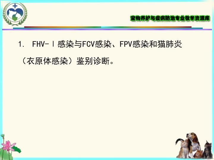 FHV-Ⅰ