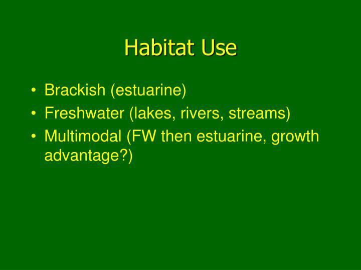 Habitat Use