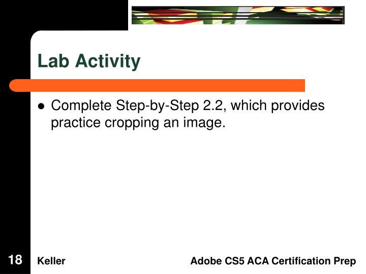 Lab Activity