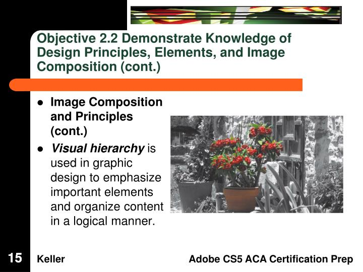 Objective 2.2 Demonstrate Knowledge of Design Principles, Elements, and Image Composition (cont.)