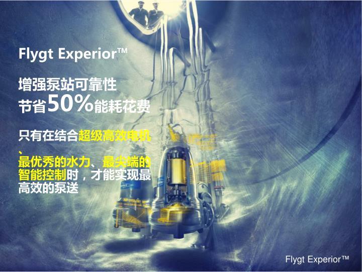 Flygt Experior™