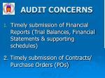 audit concerns