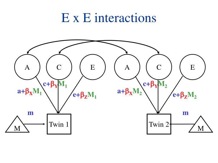 E x E interactions