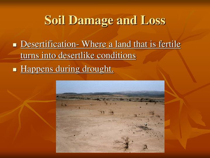 Soil Damage and Loss