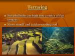 terracing