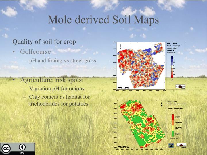 Mole derived Soil Maps