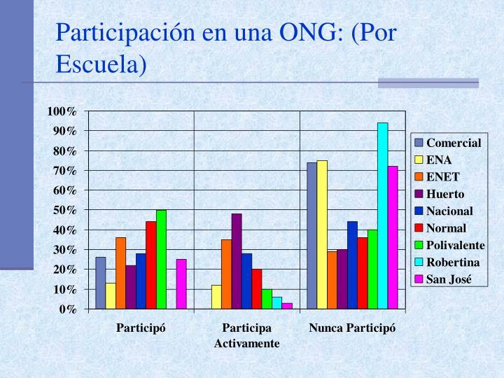 Participación en una ONG: (Por Escuela)