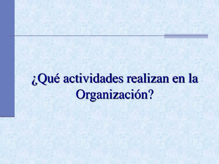 ¿Qué actividades realizan en la Organización?