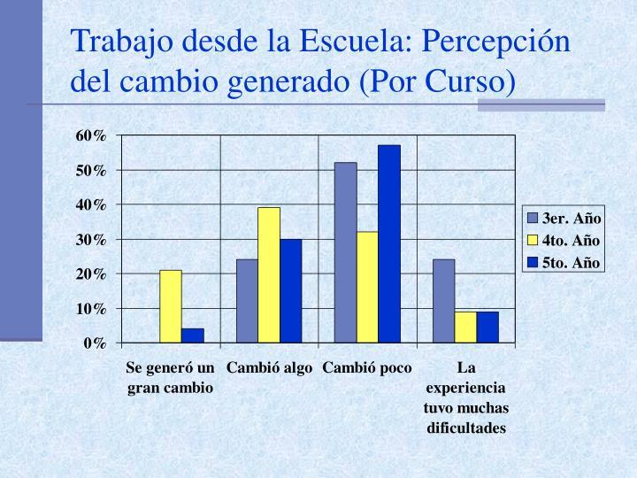 Trabajo desde la Escuela: Percepción del cambio generado (Por Curso)