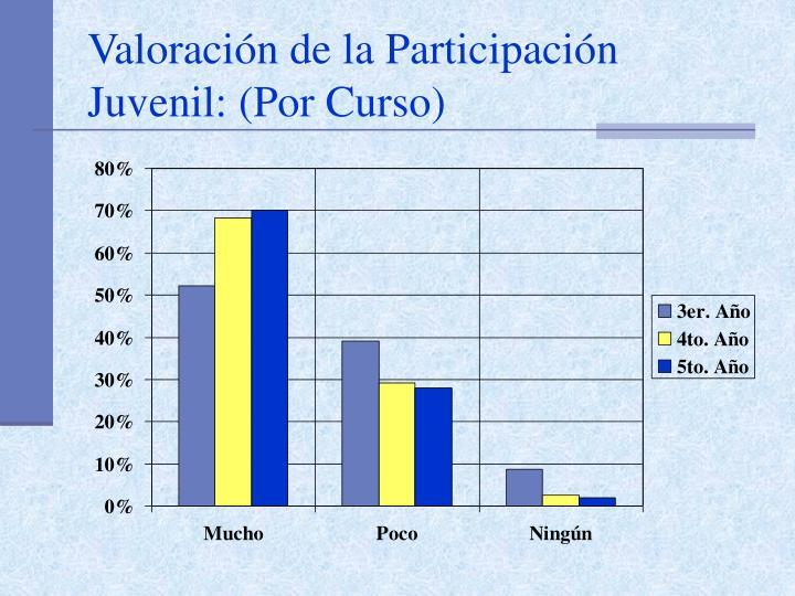 Valoración de la Participación Juvenil: (Por Curso)