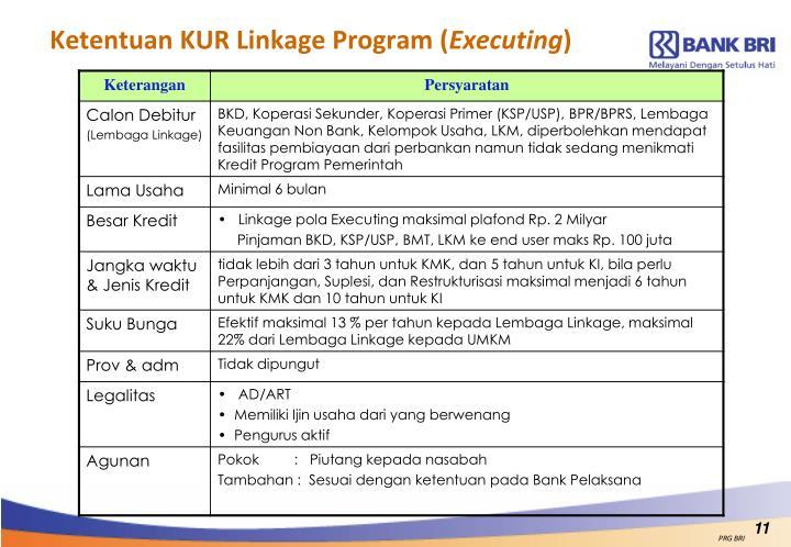 Ketentuan KUR Linkage Program (