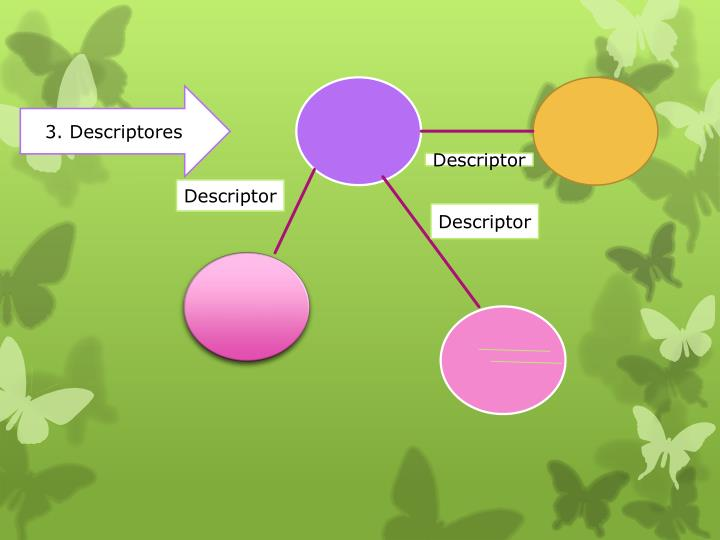 3. Descriptores