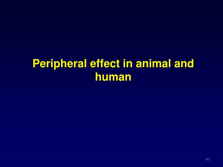 Peripheral effect in animal and human