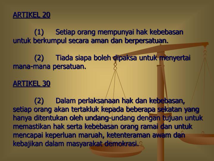 ARTIKEL 20