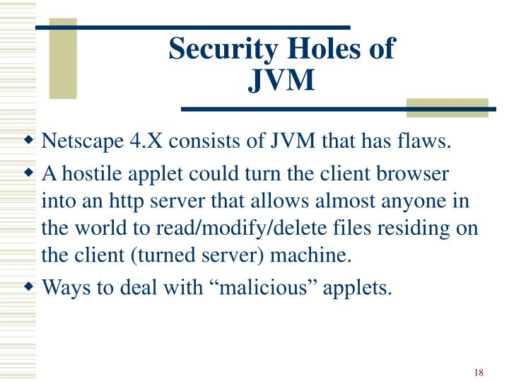 Security Holes of