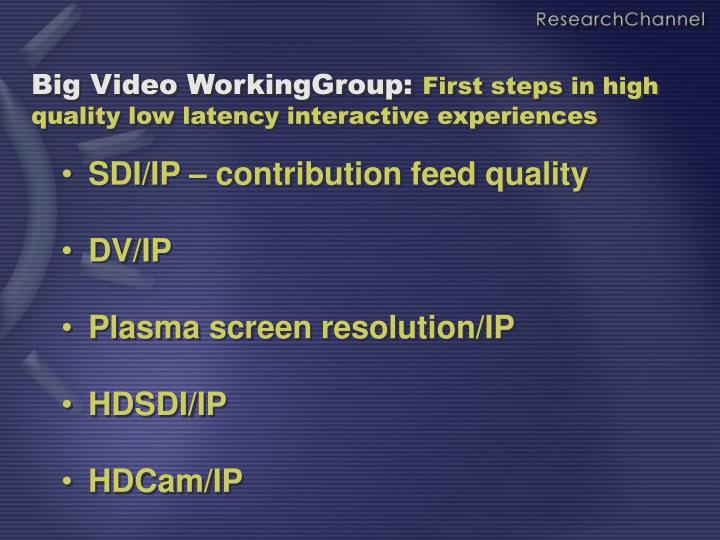 Big Video WorkingGroup: