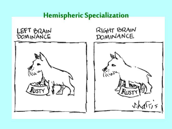Hemispheric Specialization