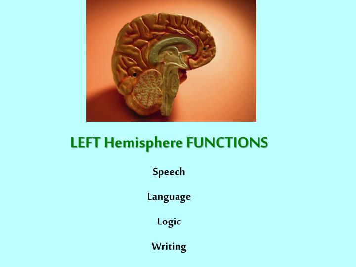 LEFT Hemisphere FUNCTIONS