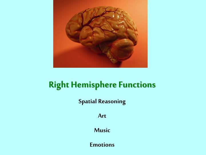 Right Hemisphere Functions