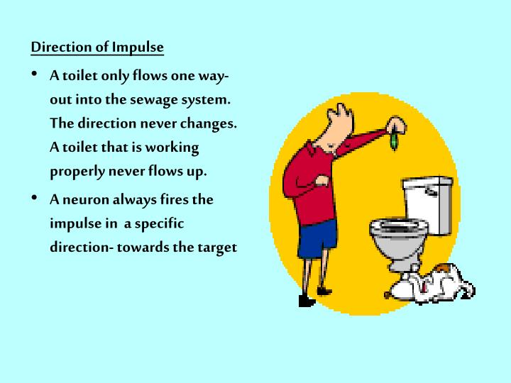 Direction of Impulse