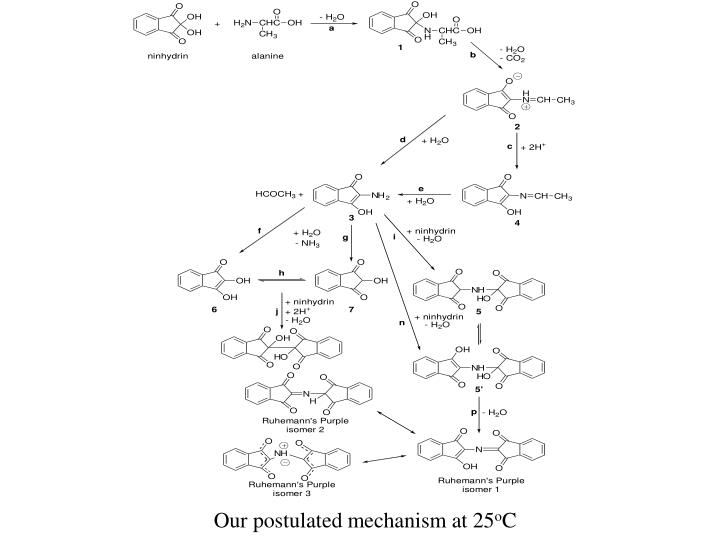 Our postulated mechanism at 25