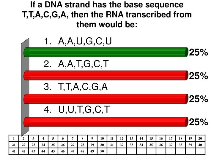 If a DNA strand has the base sequence T,T,A,C,G,A, then the RNA transcribed from them would be: