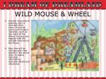wild mouse wheel