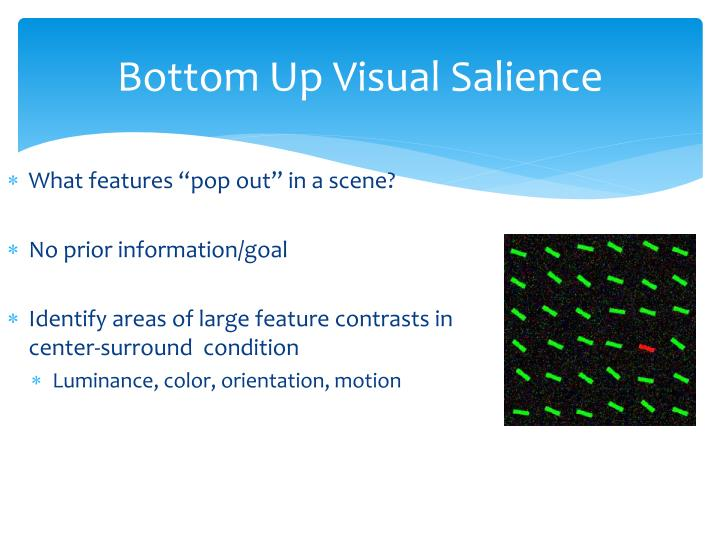 Bottom up visual salience