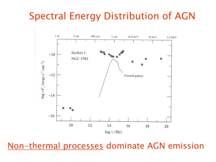 Spectral Energy Distribution of AGN
