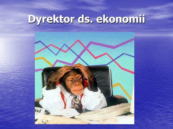 Dyrektor ds. ekonomii