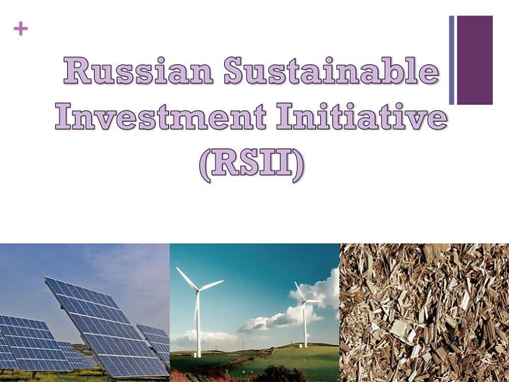 Russian Sustainable Investment Initiative (RSII)