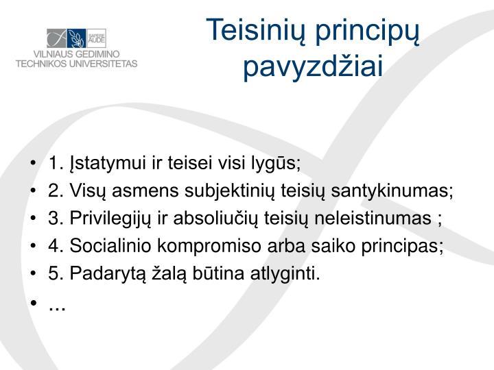 Teisinių principų pavyzdžiai