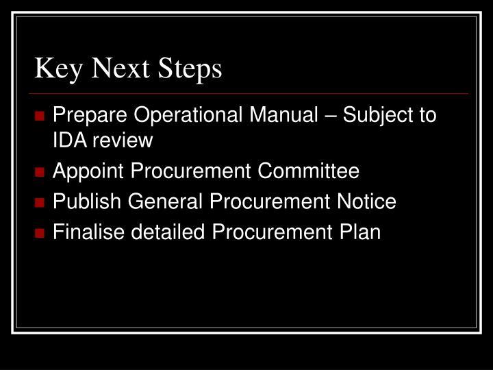Key Next Steps
