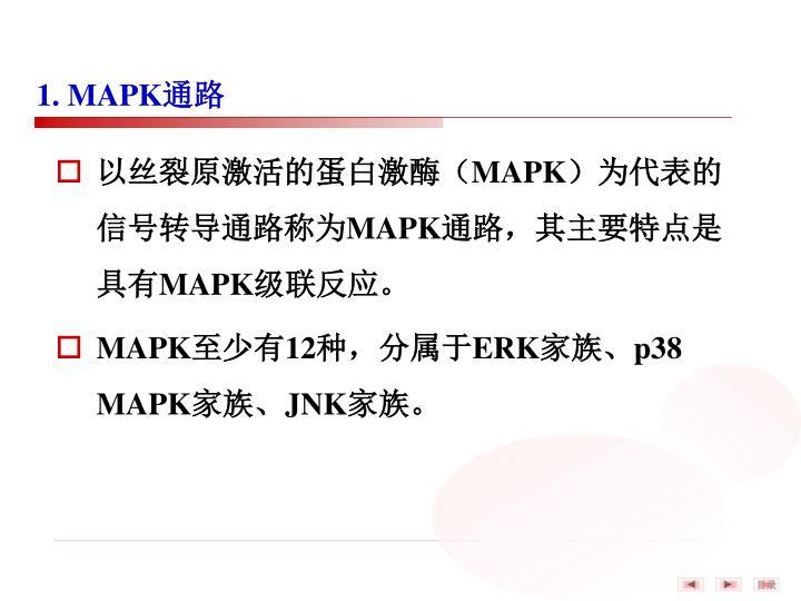 1. MAPK