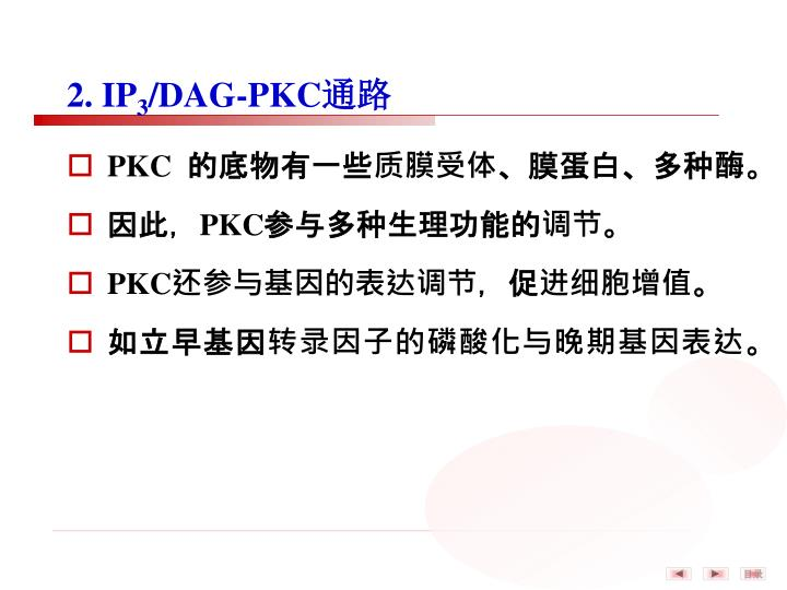 2. IP