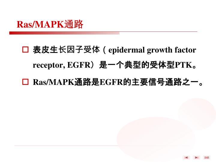 Ras/MAPK