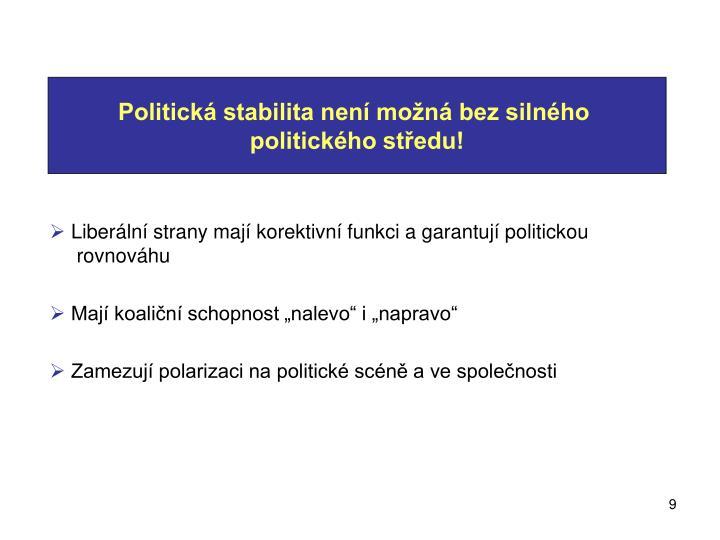 Politická stabilita není možná bez silného