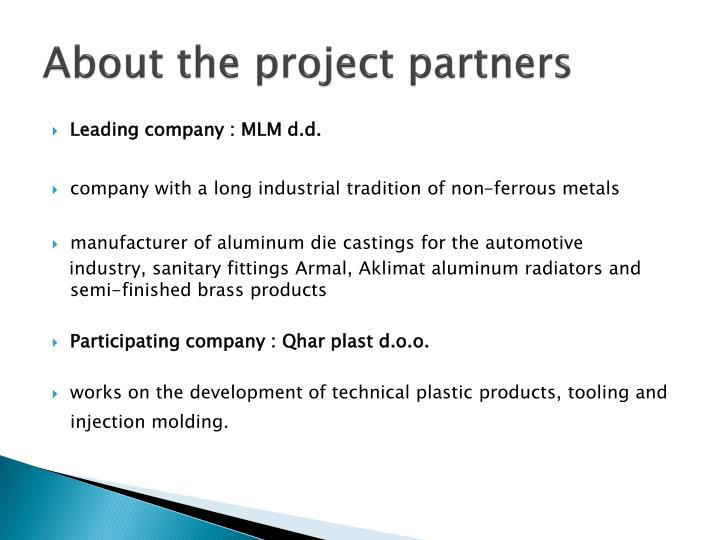 About the project partners