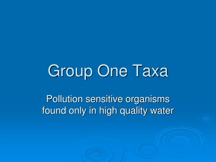 Group One Taxa