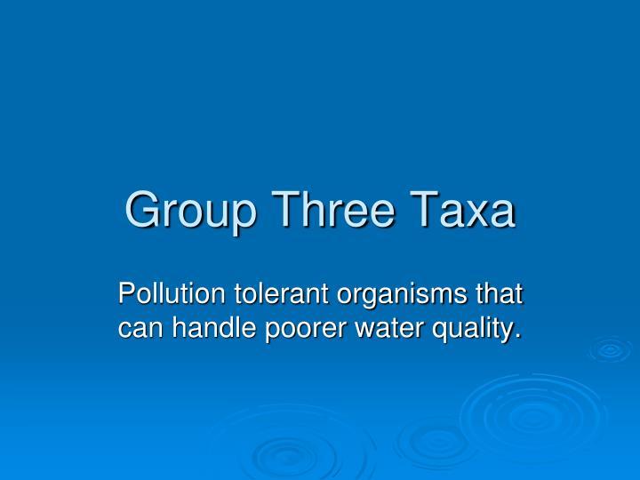 Group Three Taxa