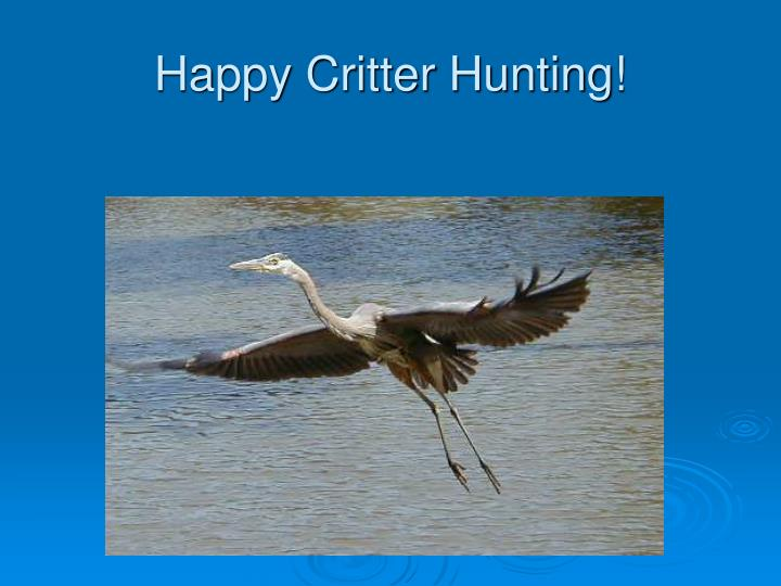 Happy Critter Hunting!