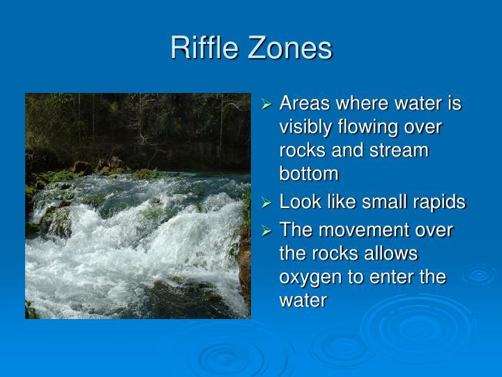 Riffle Zones